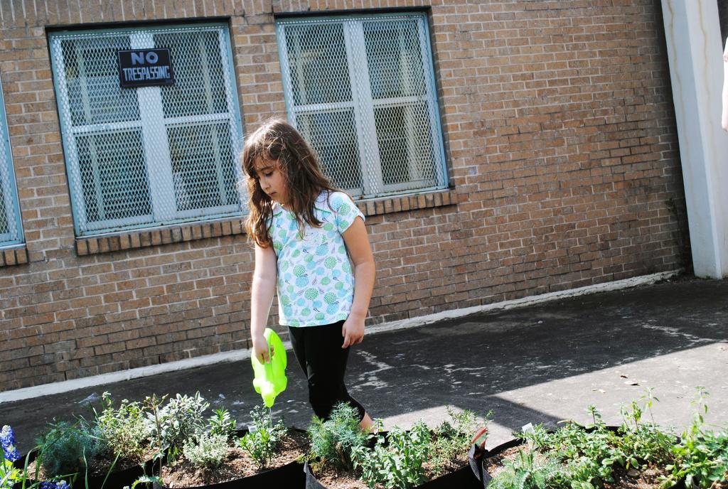 legacy leader sensory garden